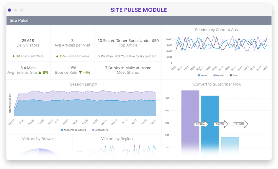 Website performance analytics dashboard in Looker screenshot