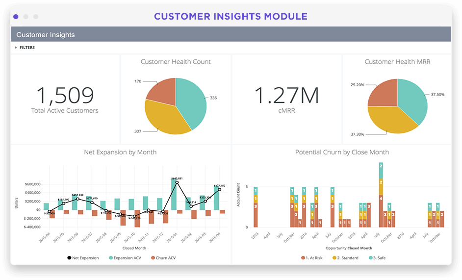 SaaS customer health dashboard in Looker screenshot
